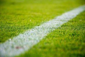 grass-2616911_960_720